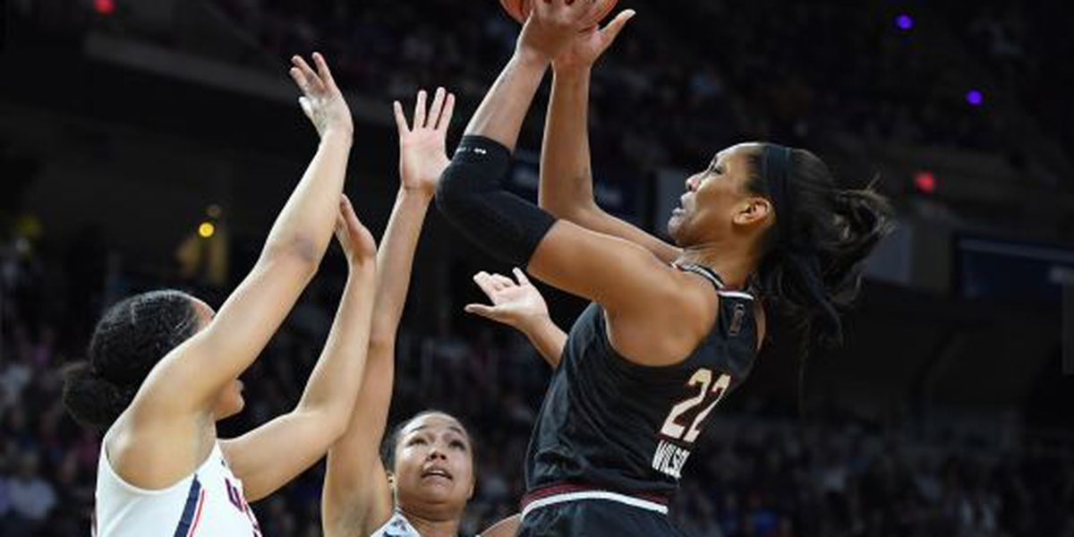 Gamecock women ousted in Elite 8