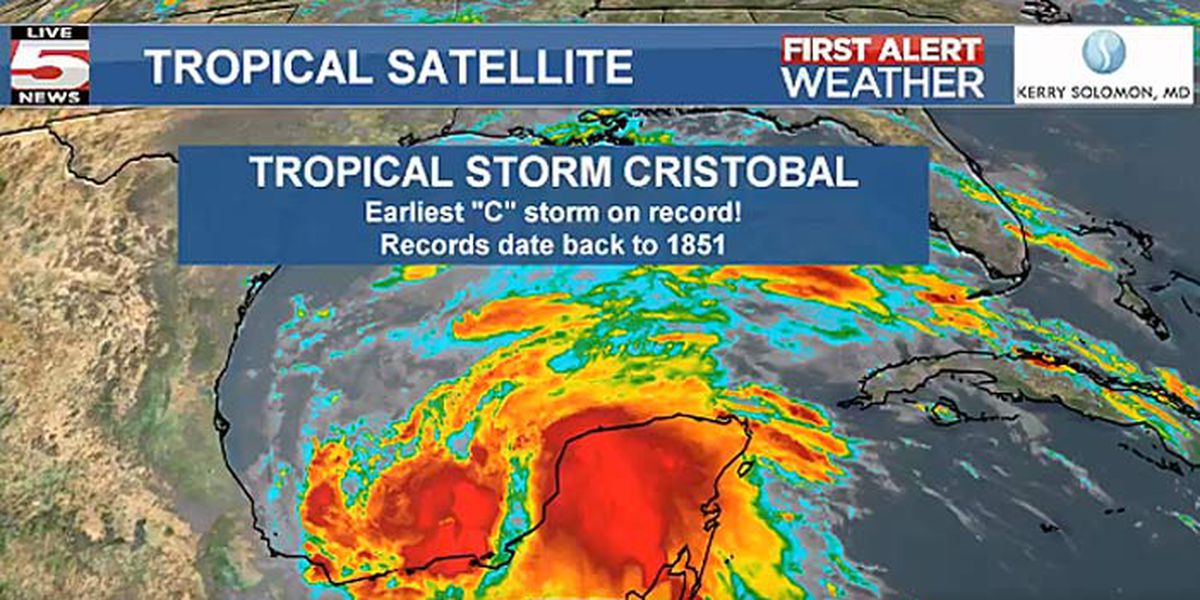 Tropical Storm Cristobal forms in Gulf of Mexico