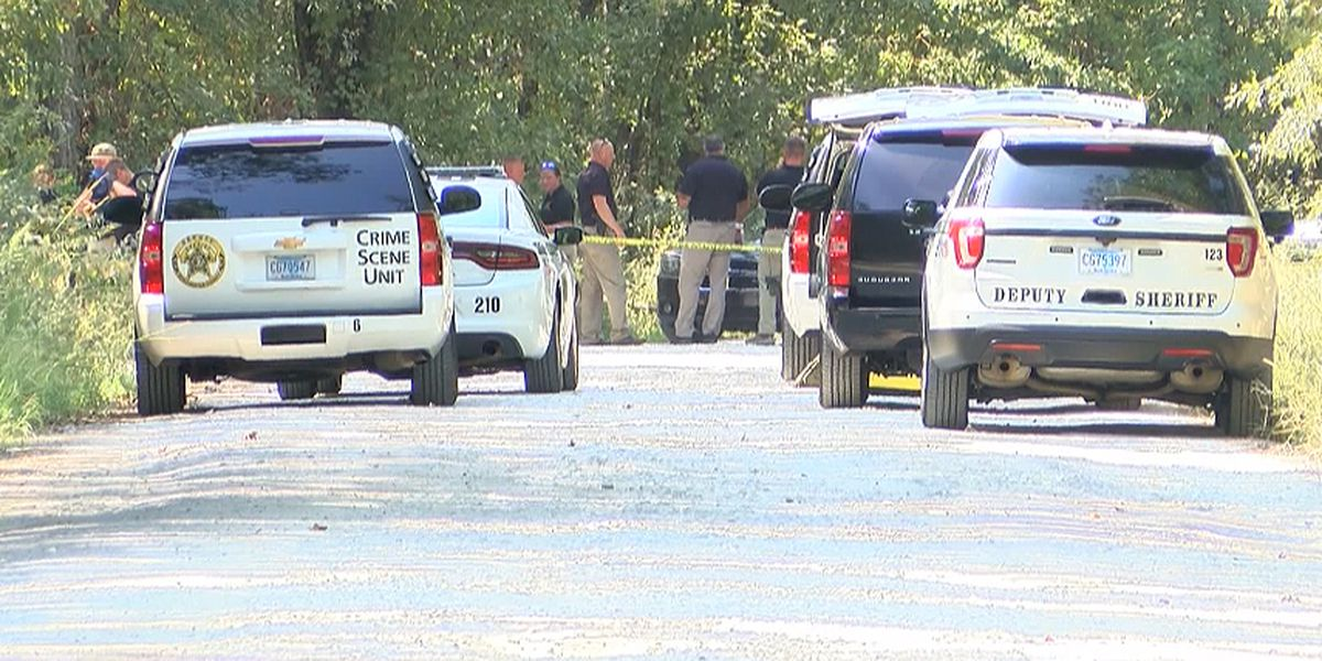 Coroner: Body found in Dorchester Co. woods is victim of apparent homicide