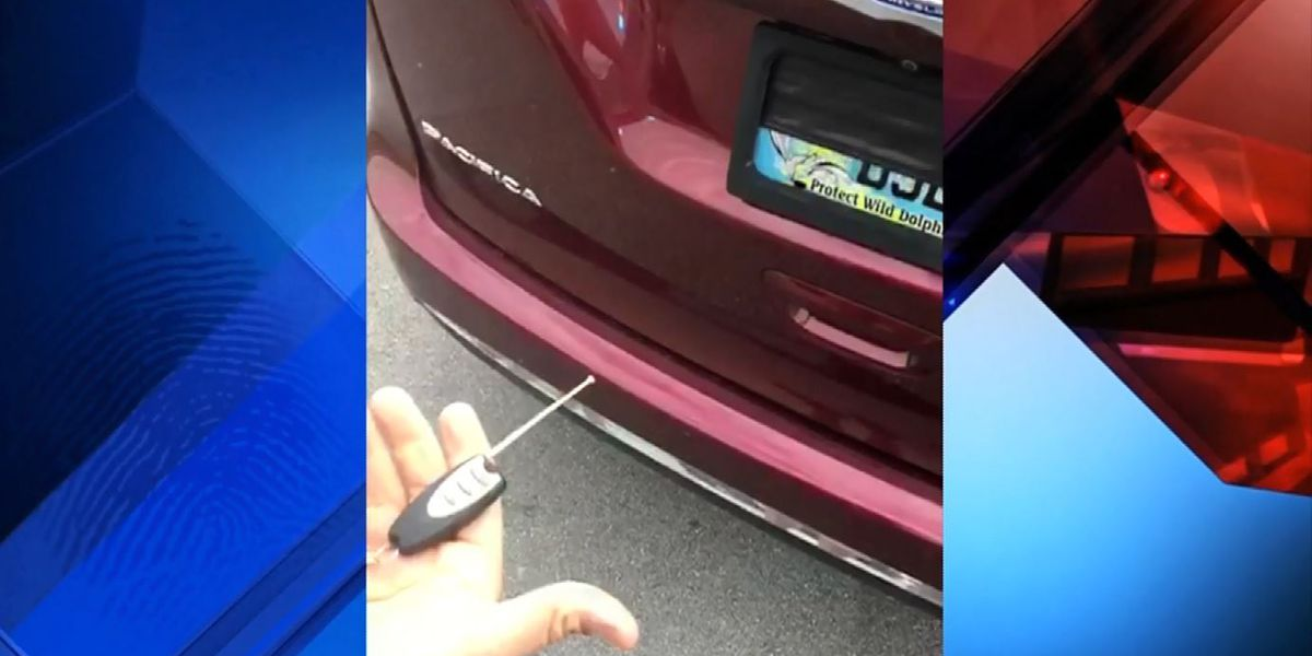 Florida man uses remote-controlled device to hide license plate and avoid tolls, troopers say
