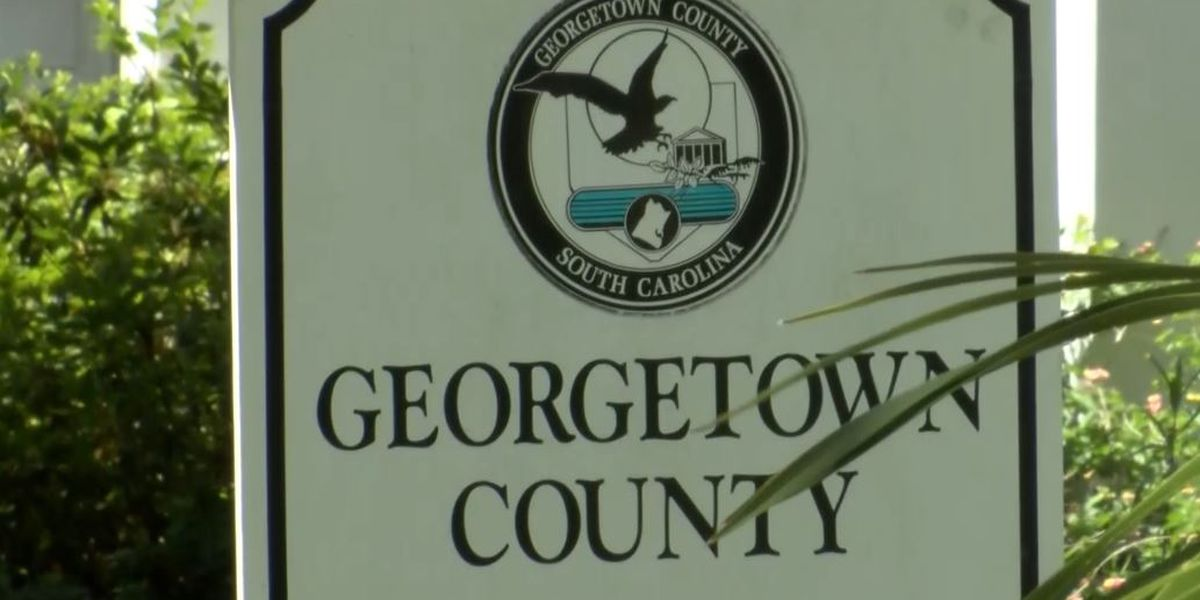 'Brief lapse in judgment': Georgetown Co. elections board chairman resigns amid political sign stealing investigation