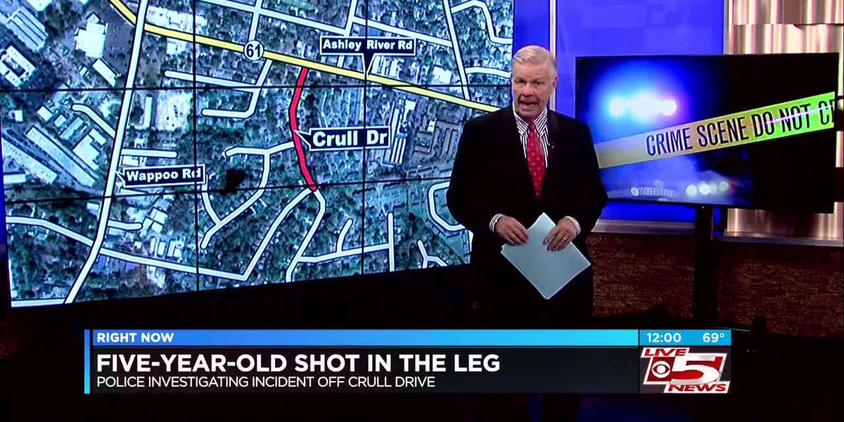 VIDEO: 5-year-old girl shot in leg at West Ashley apartment complex