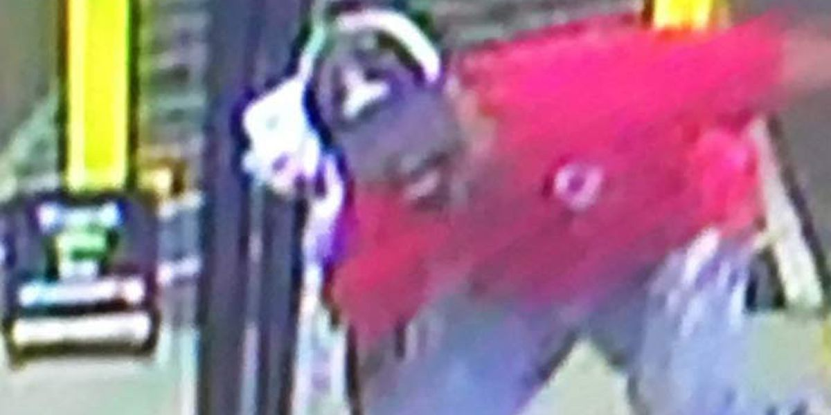 Police post surveillance images of discount store burglary