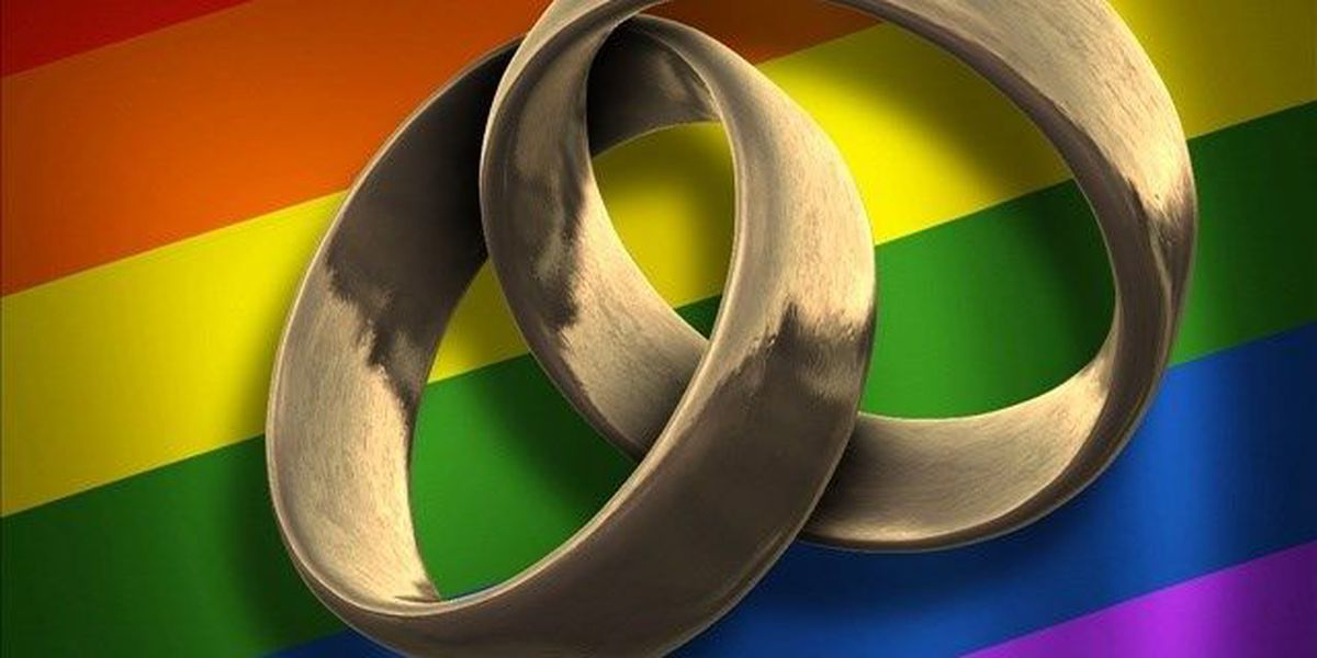 2nd gay marriage lawsuit filed in South Carolina