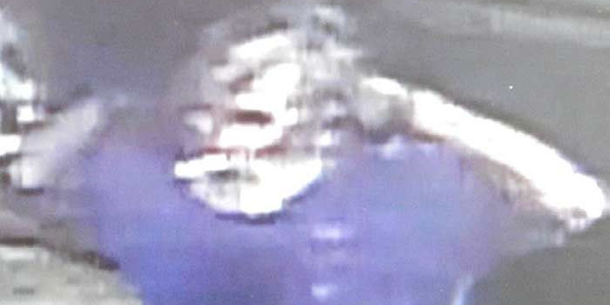 Police release surveillance images of burglary suspect