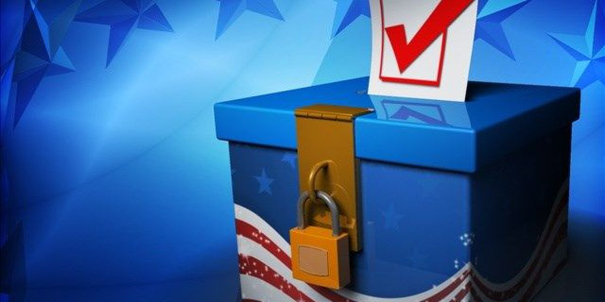 SC Supreme Court issues stay, House Dist. 114 election will go forward