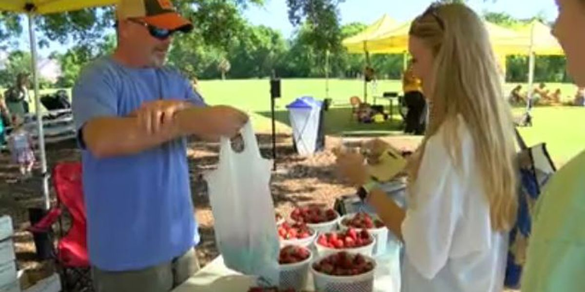 West Ashley farmers market opening with new vendors, several Lowcountry farmers