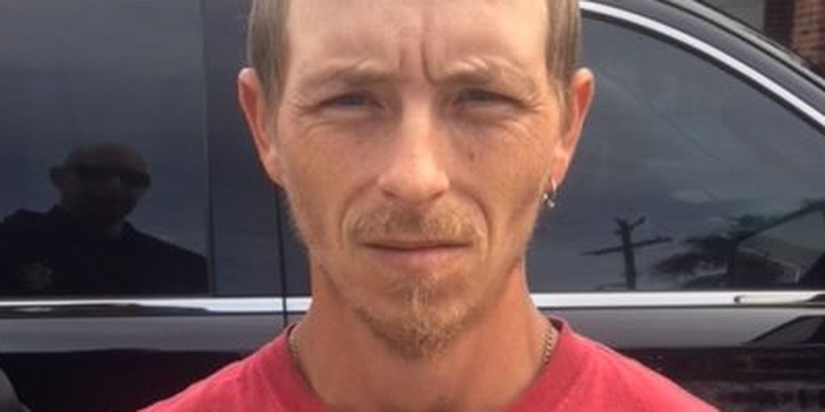 Georgetown Co. man charged after admitting false story of panther attack