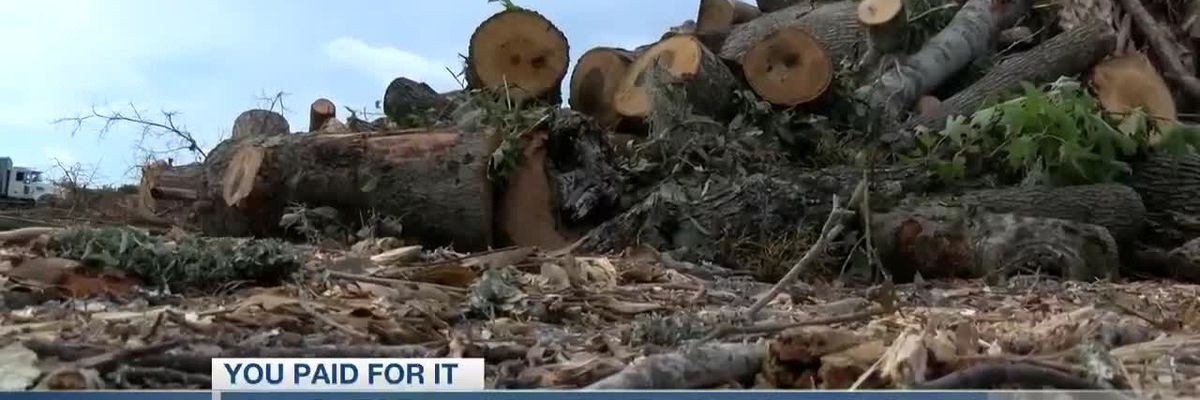 VIDEO: You Paid For It: New yard waste process should save county money