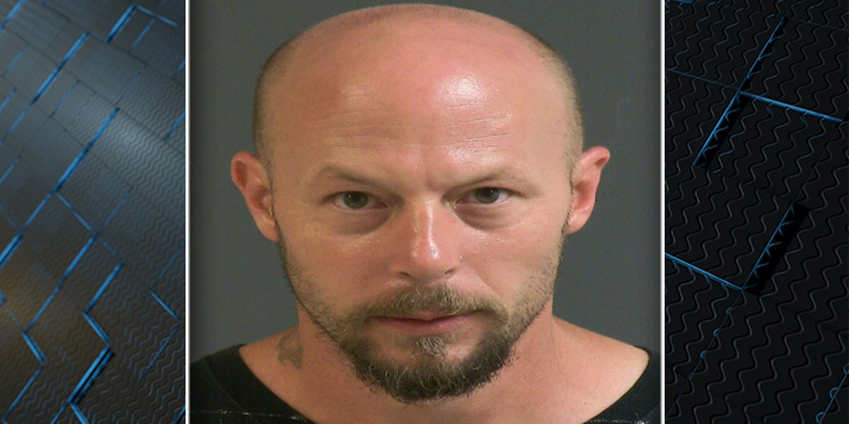 Deputies: Man hit pitbull on head with shovel after it urinated inside house