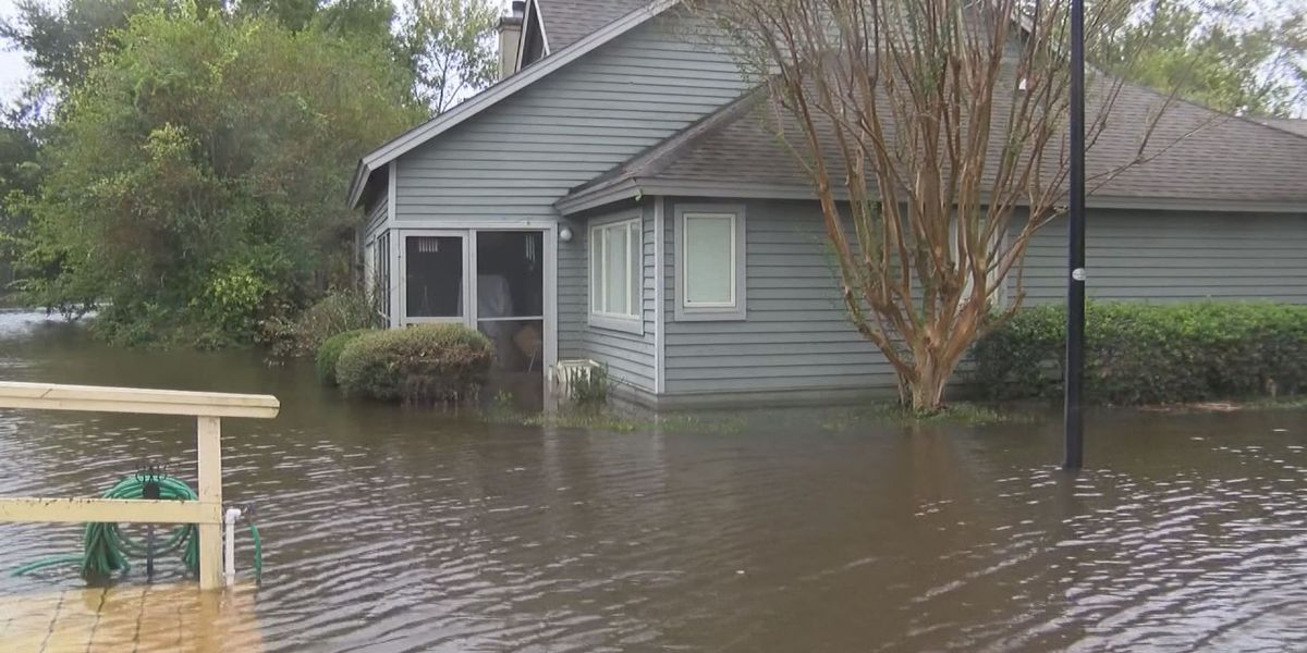 Environmental group's survey seeks to identify flooding solutions in Charleston Co.
