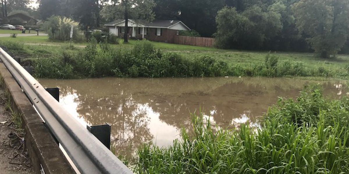 Berkeley Co. councilmembers working to clean waterway that causes homes to flood