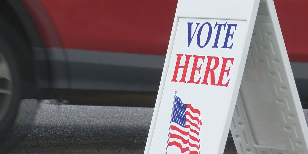 Beaufort Co. seeing record number of early voters, many first time voters