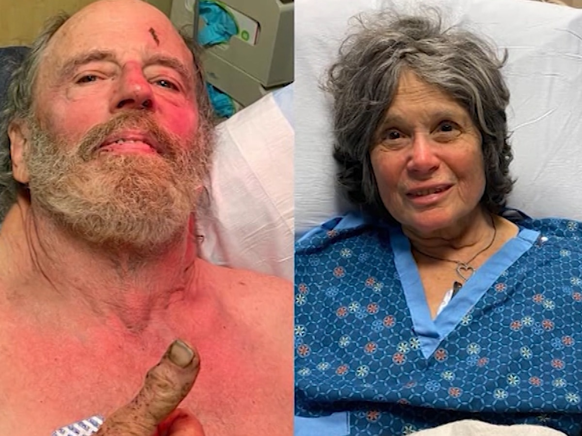 Hikers lost in Calif. forest for a week found alive
