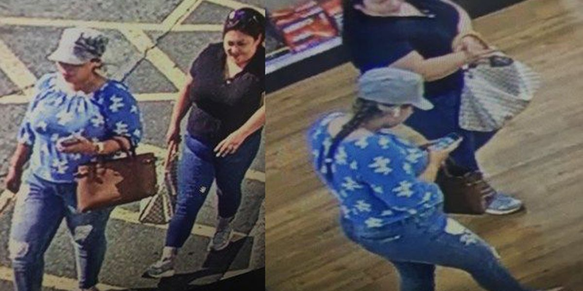 CPD looking to identify 2 women in connection to theft at James Island County Park
