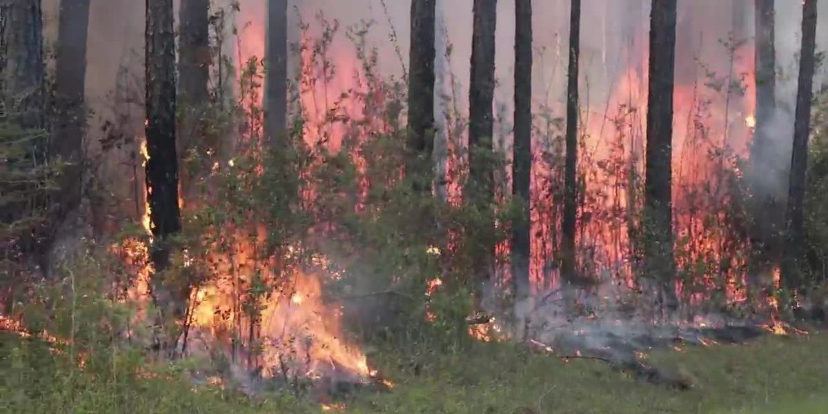 National Weather Service issues Fire Danger Statement