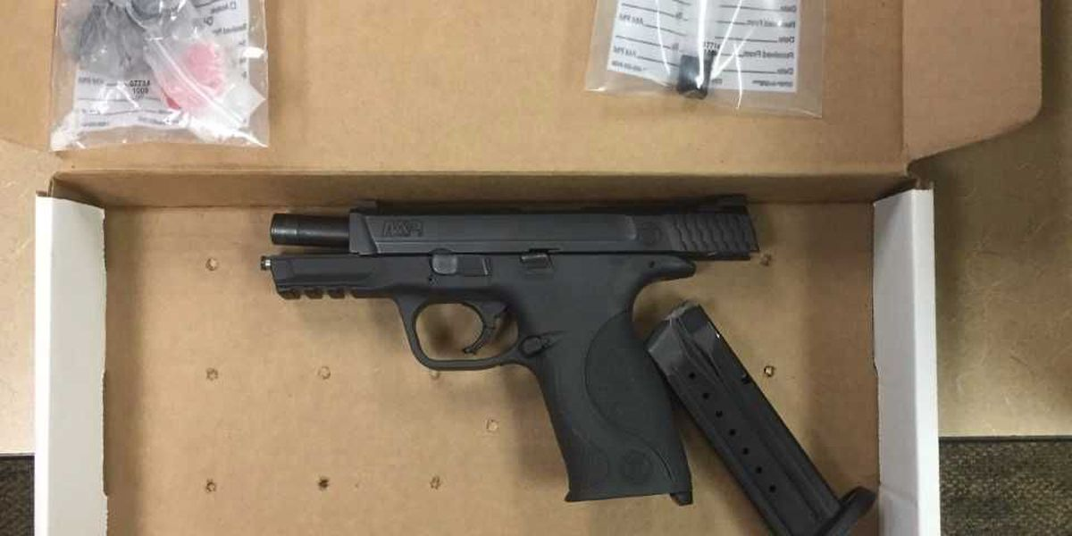 Drugs, gun seized following complaints of illegal activity in North Charleston