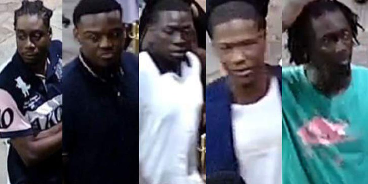 Charleston Police search for 5 persons of interest in shots-fired incident