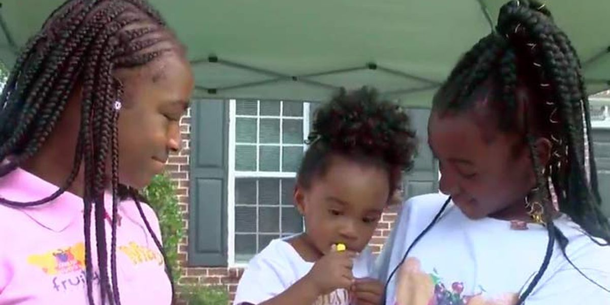 Hall of Fame: Sisters raise money to help others through lemonade stand