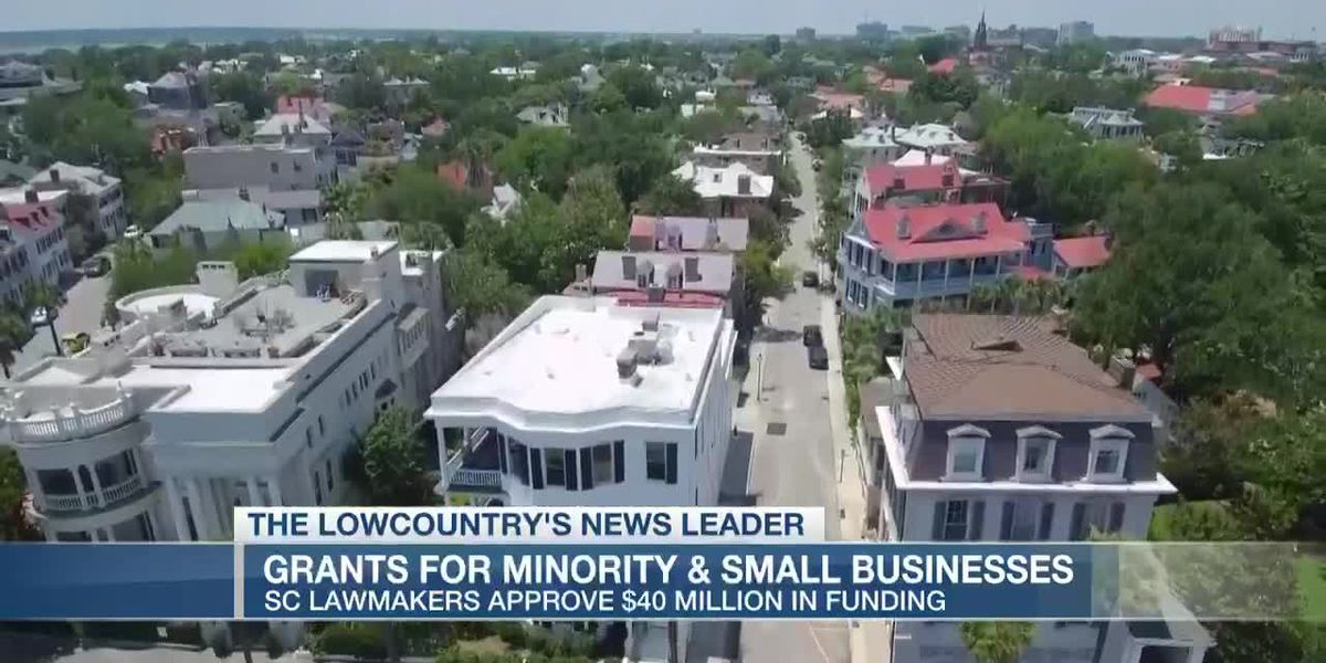 VIDEO: S.C. lawmakers approve $40 million in grants for minority, small businesses