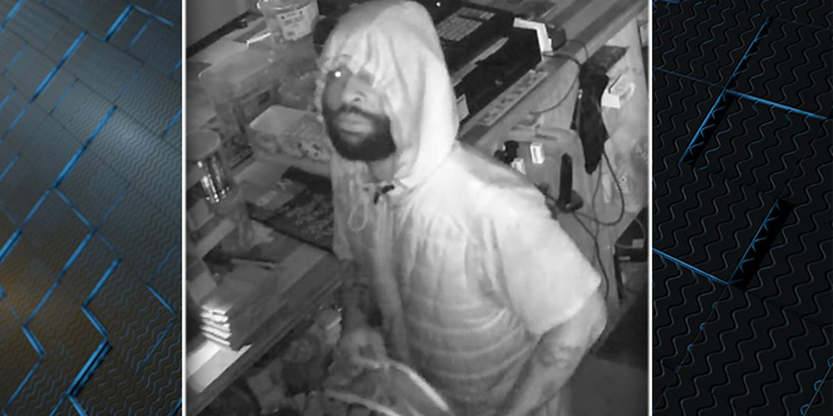 North Charleston police officers searching for burglar caught on camera