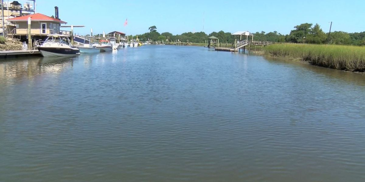 Experts issue warnings on Lowcountry water quality